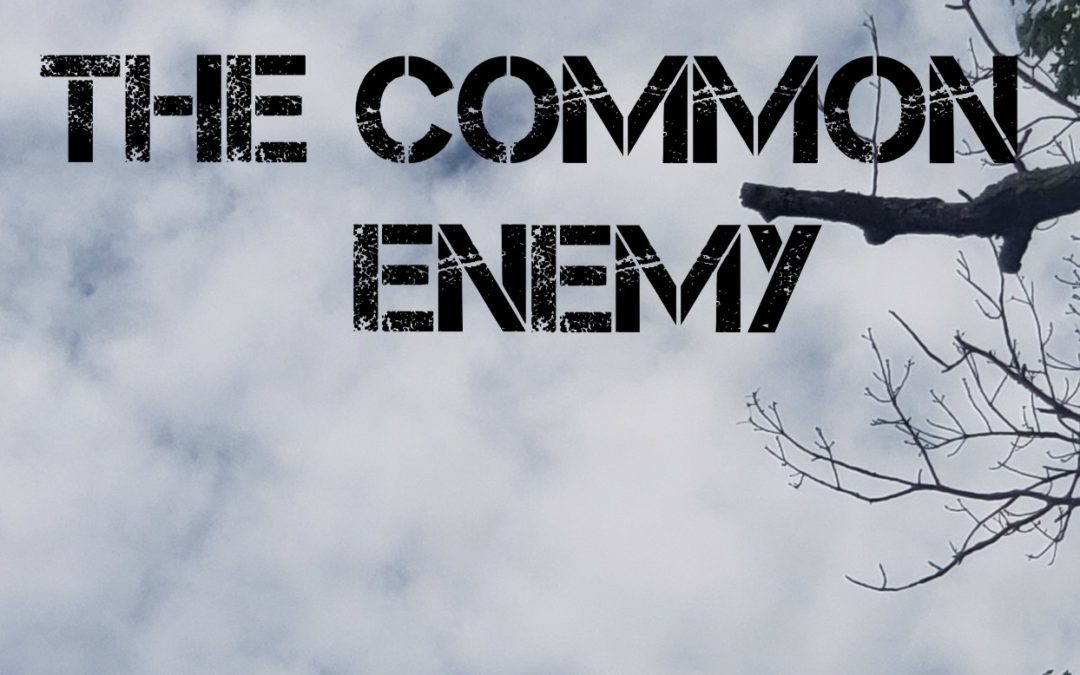 The Hawk- The Common Enemy